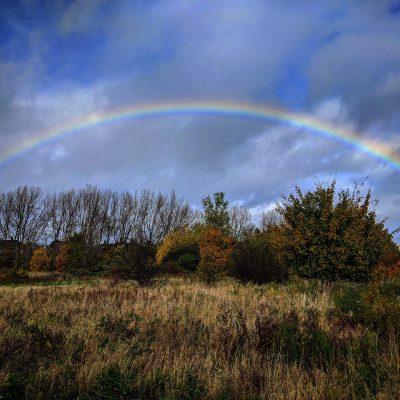 A rainbow
