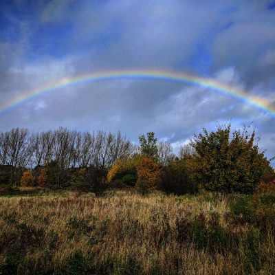 A photo of a rainbow in a blue sky from a field