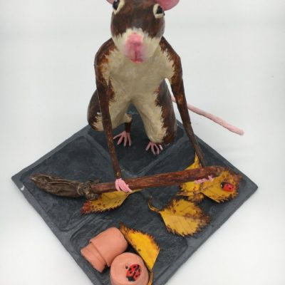 Sweeping_Mouse
